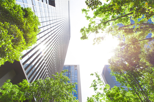 Study takes 10-year look at green building payoff